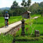 Cara Menikmati Tour eBikes Bali